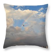 6- Rainbow And Seagull Throw Pillow