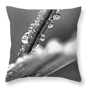 Raindrops On Grass Throw Pillow by Elena Elisseeva