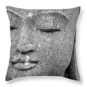 Renewal Series Throw Pillow