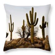 Saguaro Cacti Throw Pillow