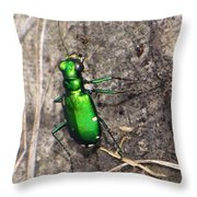 6 Spotted Throw Pillow