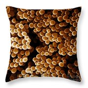 Staphylococcus Aureus, Sem Throw Pillow