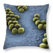 Superbug Mrsa Throw Pillow