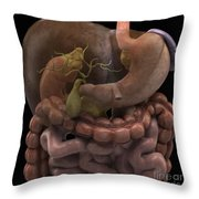 The Gallbladder Throw Pillow