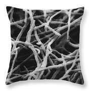 Trichophyton Fungus Sem Throw Pillow