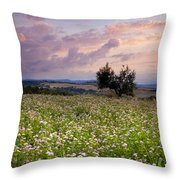 Tuscany Throw Pillow by Brian Jannsen