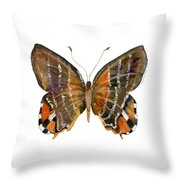60 Euselasia Butterfly Throw Pillow by Amy Kirkpatrick