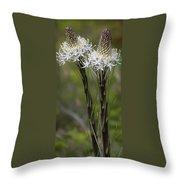 Beargrass  -  60603-32 Throw Pillow