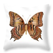 62 Galaxia Butterfly Throw Pillow by Amy Kirkpatrick
