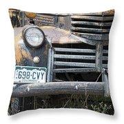 698 Cvy Throw Pillow