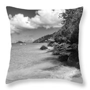 7-28-14 Throw Pillow