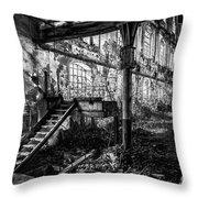 Abandoned Sugar Mill Throw Pillow