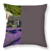 Abbaye De Senanque Throw Pillow