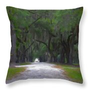 Allee Of Live Oak Tree's Throw Pillow