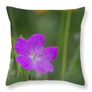 Bloody Geranium Throw Pillow
