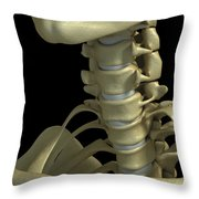 Bones Of The Neck Throw Pillow