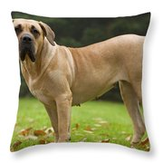Canary Dog Throw Pillow