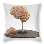 Clay Model Of Brain Throw Pillow