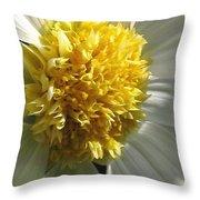 Dahlia Named Platinum Blonde Throw Pillow