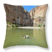 Exploring Big Bend National Park Throw Pillow