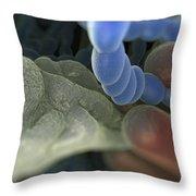 Halitosis Bacteria Throw Pillow