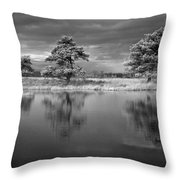 Infrared Picture Of The Nature Area Dwingelderveld In Netherlands Throw Pillow