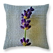 Lavender On Linen 2 Throw Pillow