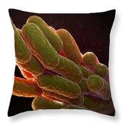 Legionella Pneumophila Bacteria Throw Pillow
