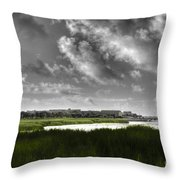 Southern Tall Marsh Grass Throw Pillow