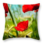 Poppy Field And Sky Throw Pillow
