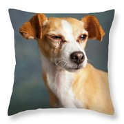 Portrait Of A Chihauhua Mix Dog Throw Pillow