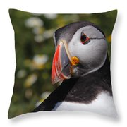 Puffin Throw Pillow