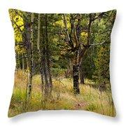Rocky Mountain Autumn Throw Pillow