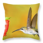 Ruby Throated Hummingbird Female Throw Pillow