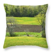 Spring Farm Landscape With Dandelion Bloom In Maine Throw Pillow