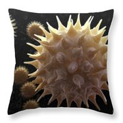 Sunflower Pollen Throw Pillow