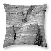 New Mexico - Tent Rocks Throw Pillow