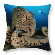 The Salvador Dali Sponge With Intricate Throw Pillow