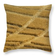 Tracks In Field Throw Pillow