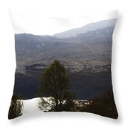 Trees On The Shore Of A Loch And Hills In The Scottish Highlands Throw Pillow