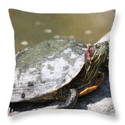 75 Year Old Turtle Moving On Throw Pillow