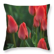 7reds Throw Pillow