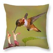 Allens Hummingbird Throw Pillow
