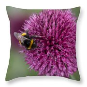 Beth Chatto Gardens Throw Pillow