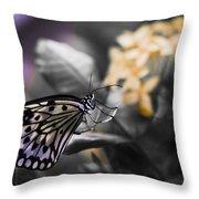 Butterfly Throw Pillow