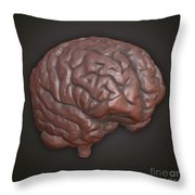 Clay Model Of Brain Throw Pillow