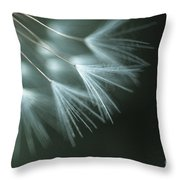 Dandelion Close-up View Backlit Throw Pillow