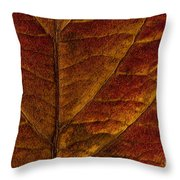 Dogwood Leaf Backlit Throw Pillow
