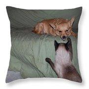 Foxy And Ninja Throw Pillow