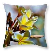 Frangipani Blossom Throw Pillow